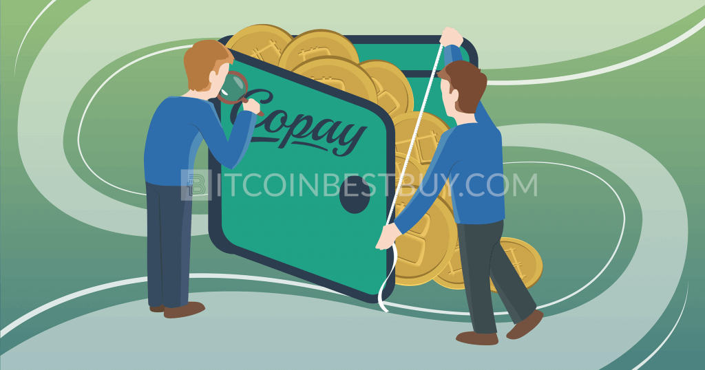 Copay bitcoin wallet: review & guide