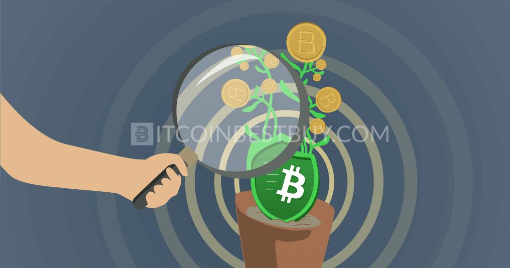 Review of GreenAddress Bitcoin Wallet