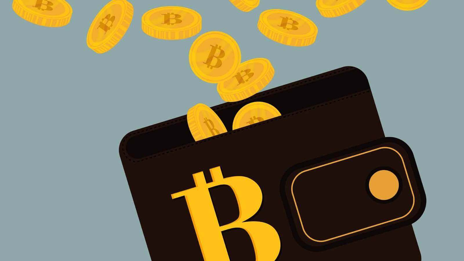 Store bitcoins in your wallet